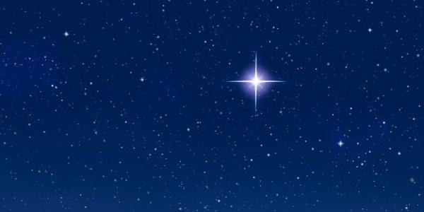 13332-star_magi600x300